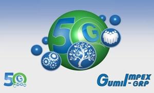 GumiImpex - GRP